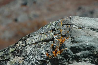 Orange rocks.