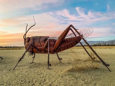Anza Borrego metal sculpture.