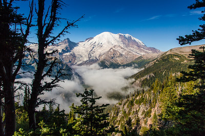 Mount Rainier from the Sunrise Park Road