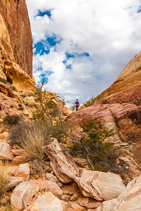 On the White Domes Trail, Valley of Fire State Park