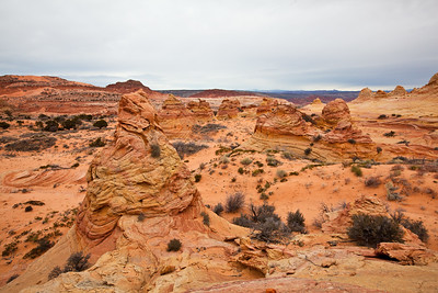 Cottonwood Cove , South Coyote Buttes