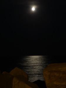 Hunter's Moon. Milwaukee, Wisconsin