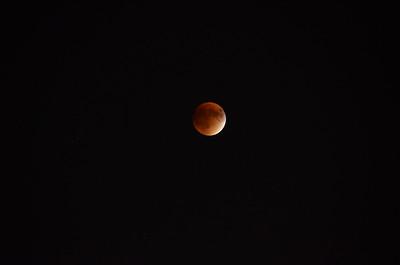 Blood moon. Palatine, Illinois