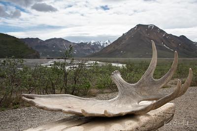 AlaskaLandscape-28