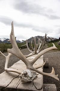 AlaskaLandscape-27