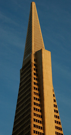Transamerica, Home of my Life Insurance