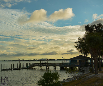 01-09-14 My final walk in SRQ before departing for ATL - this is Hart's Landing and the site of many recent bird pictures.