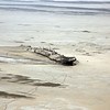 Eduard Bohlen shipwreck and animal tracks along the Skeleton Coast, Namibia