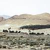Mountain ridge and dry wadi bed near Ain El Ouchika, Tunisia