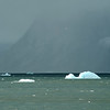Summer snowstorm over icy waters of the outer Hornsund, Svalbard