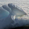 Blade-type 'growler' iceberg drifting in sea arm, west Greenland