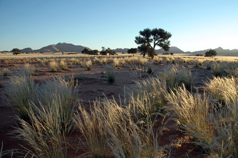 Grassy plains and isolated mountains, central Namibia
