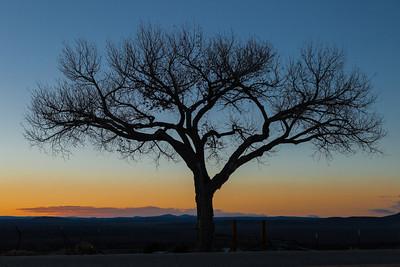 Sunset Silouette