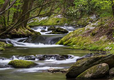 Laurel Creek - 1