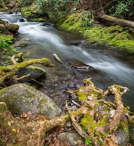 Laurel Creek - 2