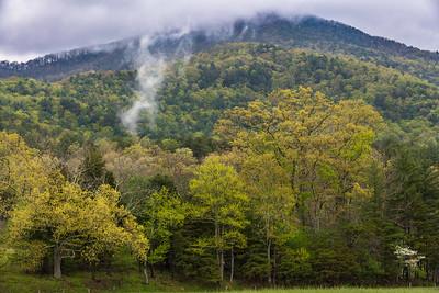 Mist off the Mountain