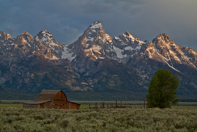 Dawn Light on the Tetons