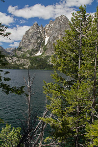 Lake Jackson & Mt. Moran