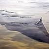 Emerging tidal flat, southern Alaska
