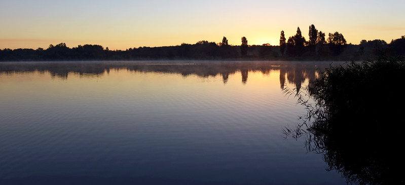 Dawn over misty lake, The Netherlands