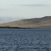 Florena Island