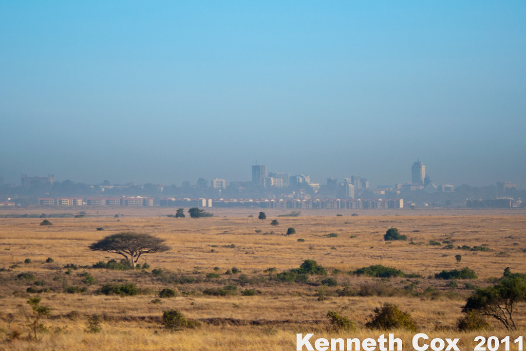 Nairobi National Park is 7km from downtown Nairobi. Until recently, it used to be attached to the Masaai Mara Reserve via wildlife corridor. The area still remains wild.  Some taxis with special licenses will drive through it as a shortcut around traffic to the airport!