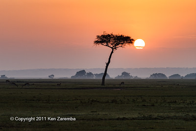 Sunrise over the Olare Orok Conservancy and the Maasai Mara Game Reserve