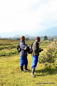 Locals hired as day porters for $10 a day carrying our day packs for our Silverback Gorilla trekking. Rwanda, 1/14/09