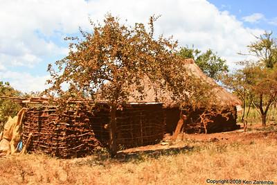 Family compound (not Masai) near the Lake Manyara Serena Lodge Tanzania, 12/31/08