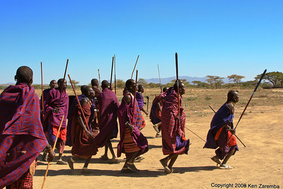 Maasai Warriors performing a welcoming dance, Tanzania 1/03/09