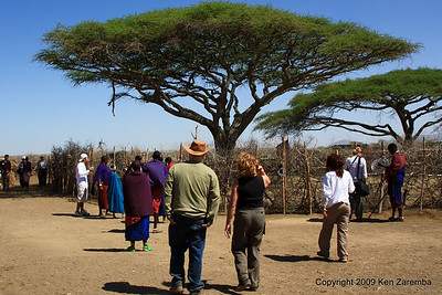 Fenced coral in the center of the Maasai village, Tanzania 1/03/09