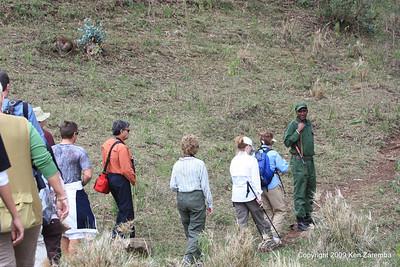 Walkabout by the Ngorongoro Serena Lodge Tanzania, 1/02/09