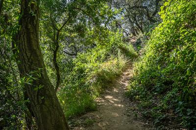 Ranch Trail