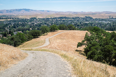 Grey Fox Trail