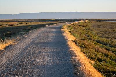 Marsh Road