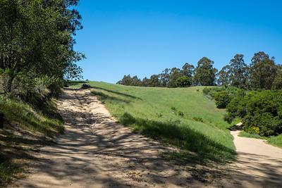 Jalquin and Goldenrod Trails