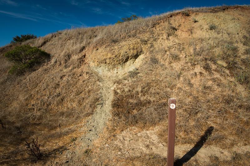 Orinda Formation