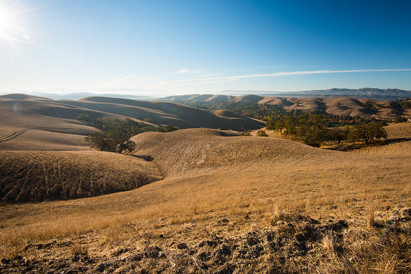 Sycamore Valley Regional Open Space Preserve; california; east bay; east bay regional parks The view from the ridgeline.