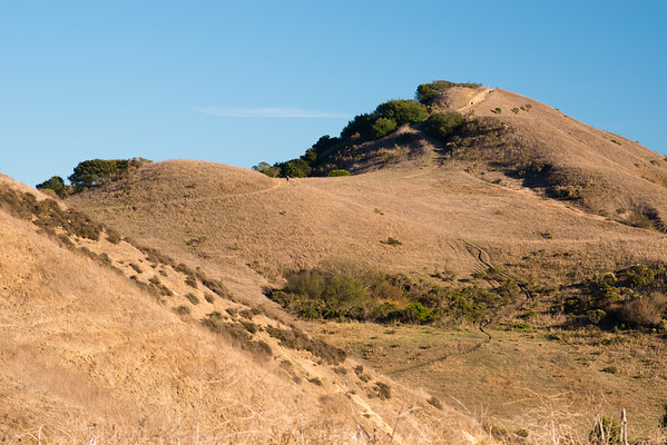 Wildcat Canyon Regional Park; california; east bay; east bay regional parks There are some steep pitches on the climb up San Pablo Ridge but the views are reward enough.