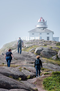 in the fog at Cape Spear, the most Easterly Point