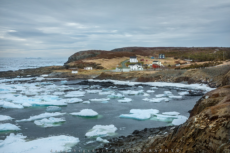 Newfoundland Charm (#0545)