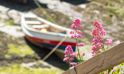 Staithes at Springtime