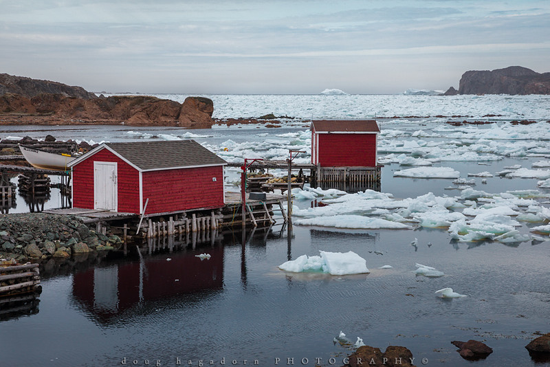Bits and Bergs (#0662)