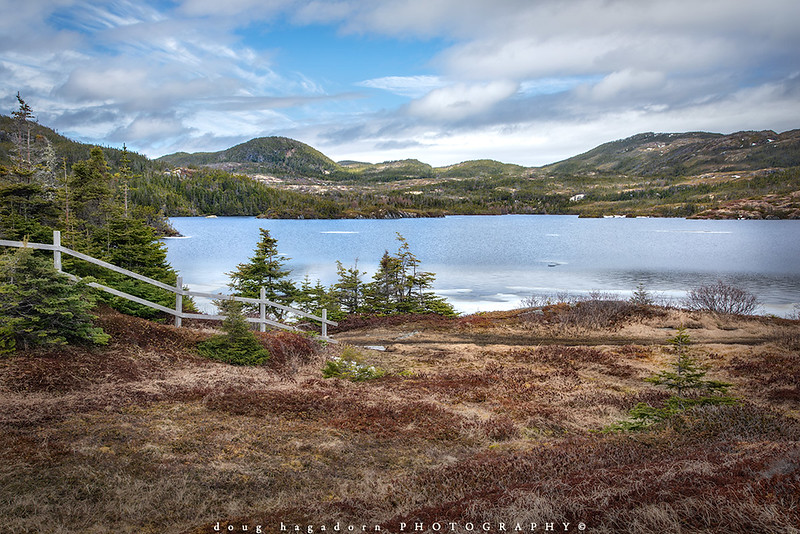 The Newfoundland Countryside (#0740)