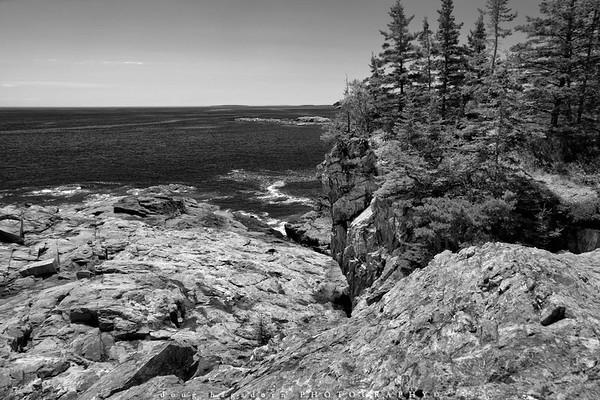 Rugged Acadia