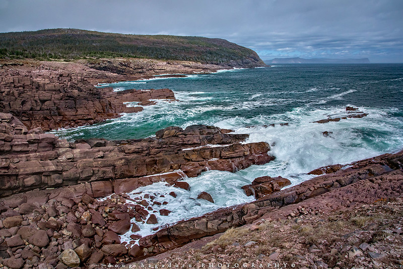 The Wild Coast of Newfoundland (#0733)