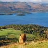 Conic Hill and Loch Lomond