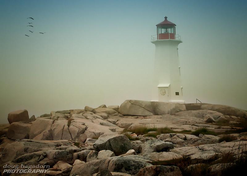 Foggy Peggy's Cove