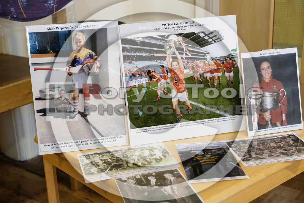 Denis O'Sullivan's GAA Collection Expo. Picture: Rory O'Toole