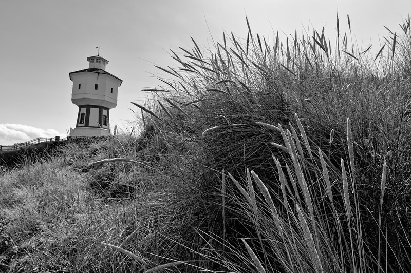 Marram grass near Langeoog's water tower (b/w)